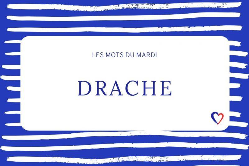 betekenis drache
